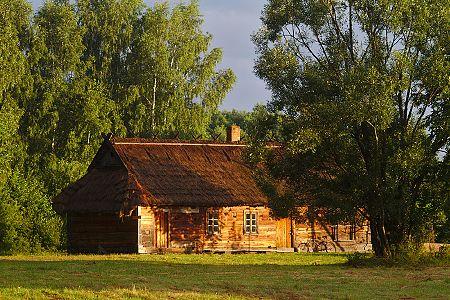zdjĂŞcia Misc shots, 2013